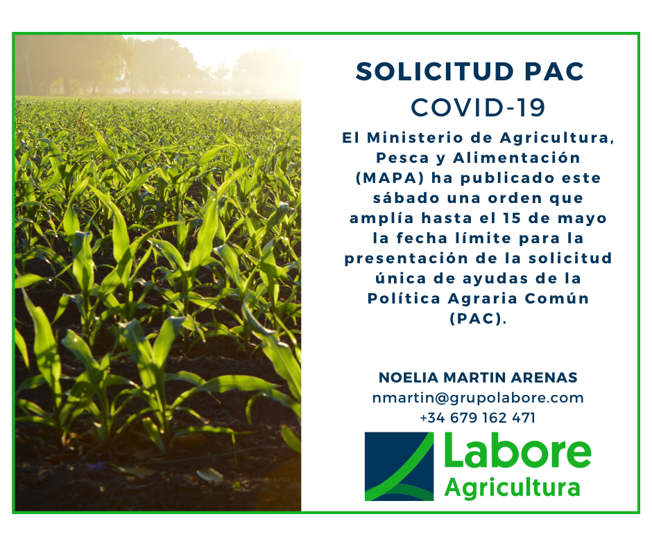 Solicitud PAC COVID-19